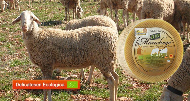queso-bio-oveja-ES